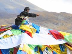 Tibet 2008 Riding the Windhorse