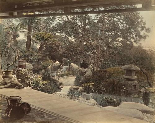Japanse tuin / Japanese garden