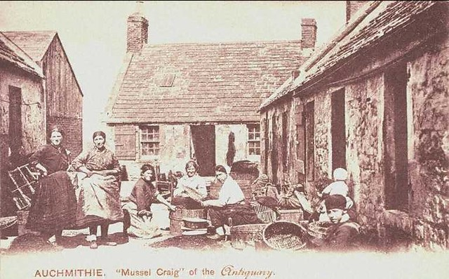 Auchmithie Mussel-craig - Old Scottish Postcard