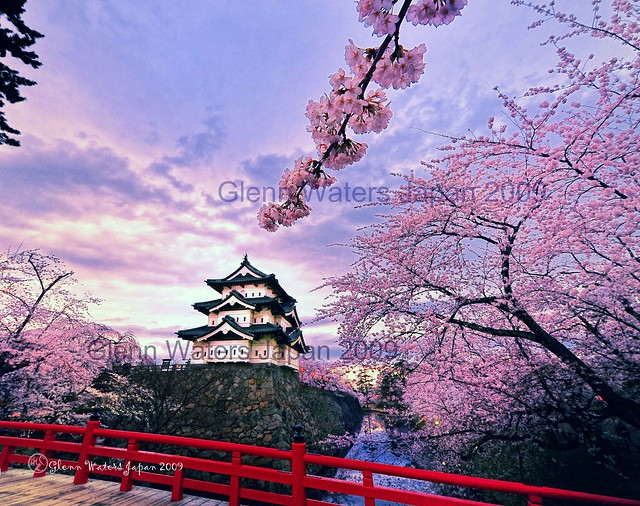 Memories of Spring. Sakura Castle Hirosaki. © Glenn Waters 3,600 visits to this photo. Thank you. Hirosaki Castle.