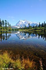 Picture Lake Washington