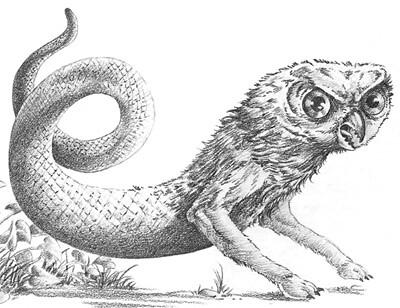 Let's Read] D&D 5e Monster Manual | Page 151 | RPGnet Forums