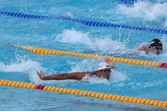 freestyle swimming(0.0), individual sports(1.0), swimming(1.0), sports(1.0), recreation(1.0), outdoor recreation(1.0), swimmer(1.0), water sport(1.0), medley swimming(1.0), breaststroke(1.0),