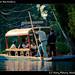 Mariachi boat in Xochimilco