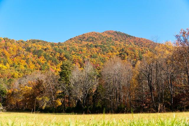 Smoky Mountain National Park Fall