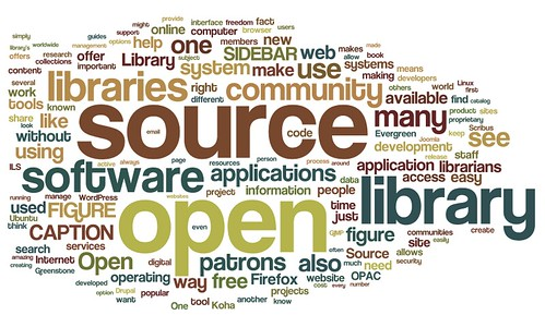 The Economics Of Open Source
