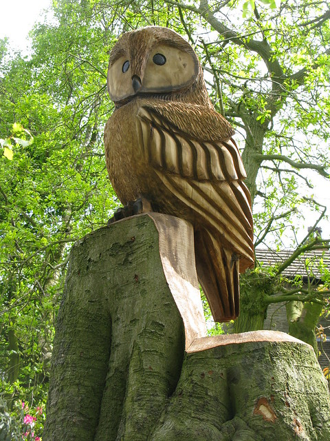 Owls carved in wood a gallery on flickr
