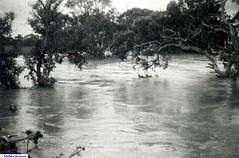 Light River floods at Korunye 1