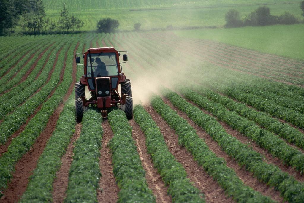 農業は1000万ほど儲かるvs衰退するオワコン産業なのか 真実は
