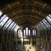 Natural History Museum by mumphalee