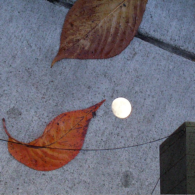 City Sidewalk Moon