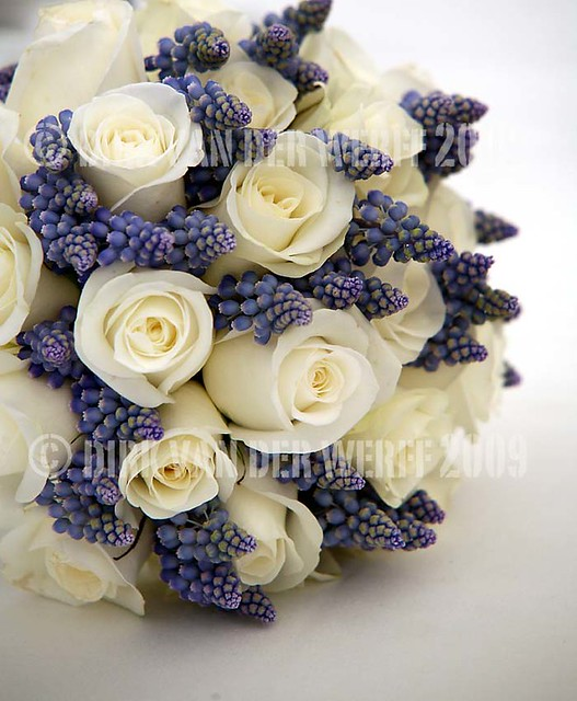 SPRING BOUQUET - WEDDING FLOWERS - BRIDE - TEESDALE WEDDING - EXCLUSIVE USE - PHOTOGRAPHY -  NORTH EAST ENGLAND - WEDDING VENUE - MUSCARI - ROSA - CREAM - WHITE - BLUE - POWDER BLUE
