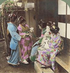 (animated stereo) five Geisha in Meiji-era Japan