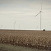 Fall wind turbine