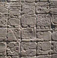 Stele 31 of Tikal: Glyphs