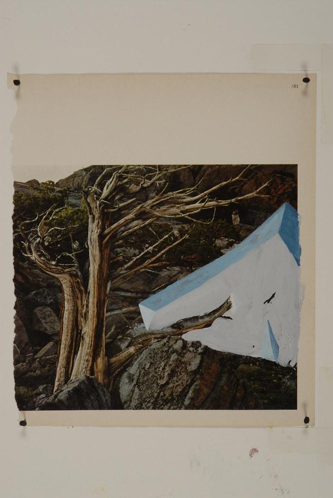 Sierra Juniper [Sierra Series]