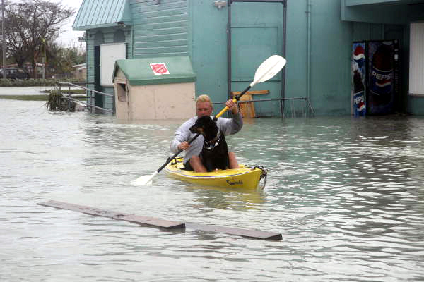 Man kayaking with dog on Flagler Avenue by the Salvation Army store: Key West, Florida