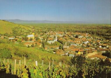 HUNGARY - Tokaj Wine Region Historic Cultural Landscape 4