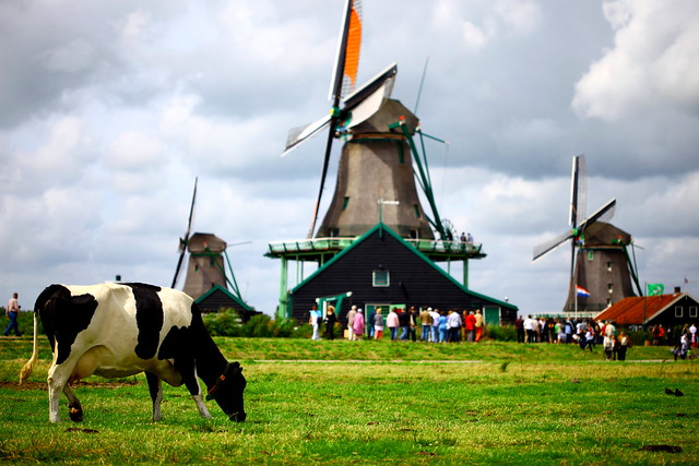 Can't get more Dutch then this, Zaanse schans - The Netherlands