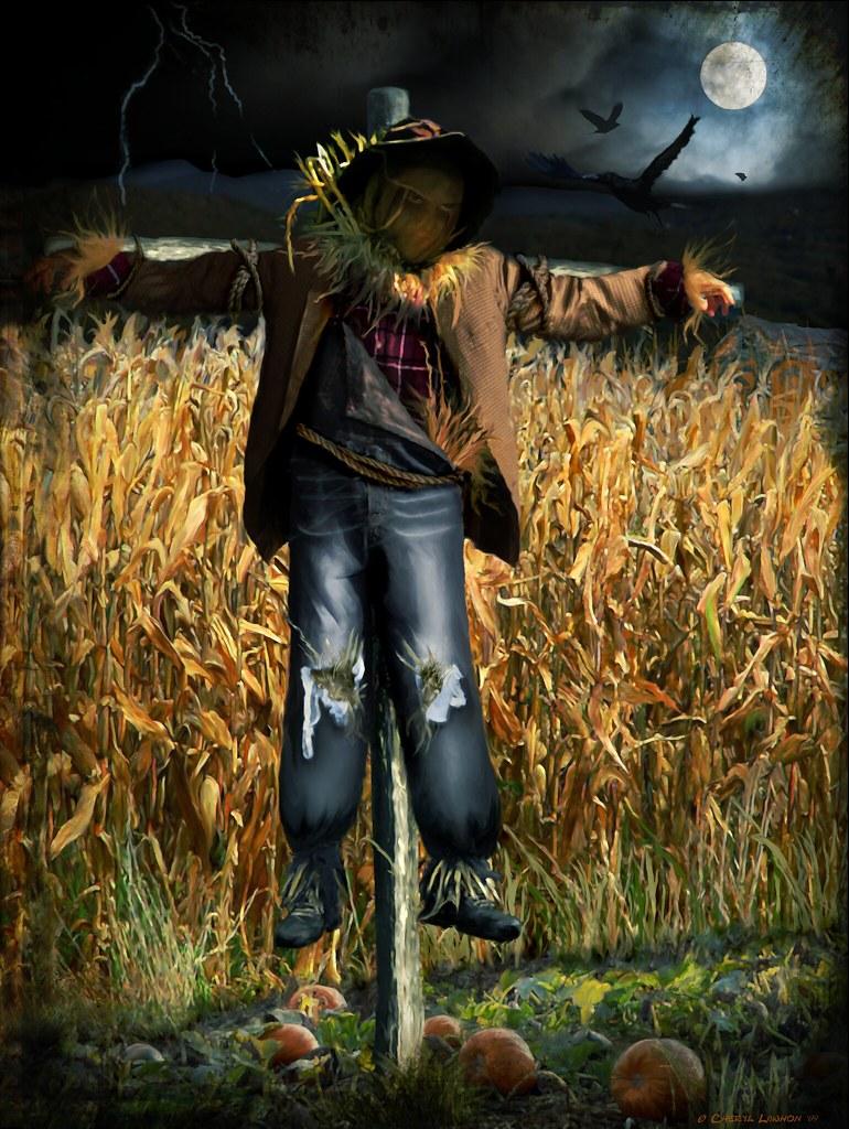 spooky halloween scarecrow - Halloween Scare Crow