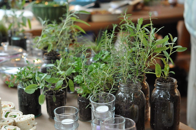 Today we're talking potted herb favors. These would be so perfect as favors at a bridal shower or dinner party, or as a housewarming gift! Remove all of your herbs from the pots they came in to start and make sure you have extra potting soil on hand in case you need it to top of your planters. to The Sweetest Occasion, a lifestyle.