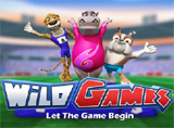 Online Wild Games Slots Review