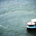 Small photo of False creek ferry!