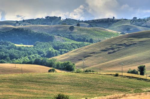 wood italien italy landscape italia tuscany toscana toscane italie toskana maremma