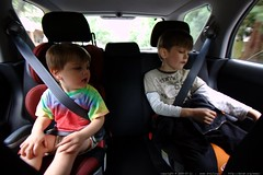 brothers in their car seats    MG 7666