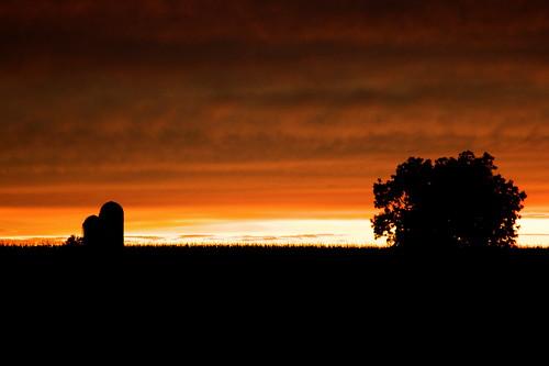 sunset usa tree field silhouette rural america canon eos rebel illinois unitedstates god dusk farm unitedstatesofamerica il silo southern smalltown saintrose clintoncounty strose downstate 24105mm canonef24105mmf4lisusm xti 400d
