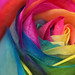 Esperando un arco iris.../Waiting for a rainbow... by Mujer De Rojo
