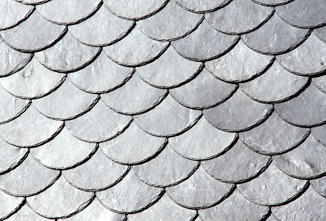 Fish scale pattern flickr photo sharing for Fish scale shingles