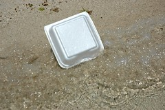 Styrofoam lunchbox washes up on a rural Mexican beach