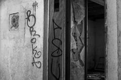 Abandoned House (04) - 21Mar09, Montcalm (France)