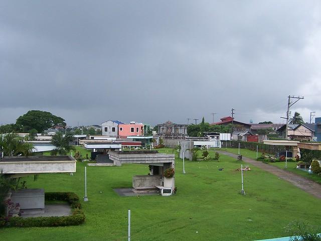 view of memorial park