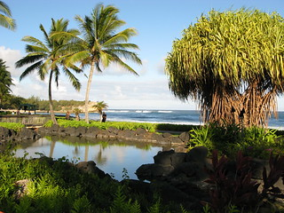 Reflections of a Hawaiian Summer