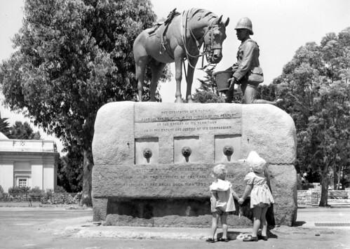 Horse Memorial, Port Elizabeth (1955)