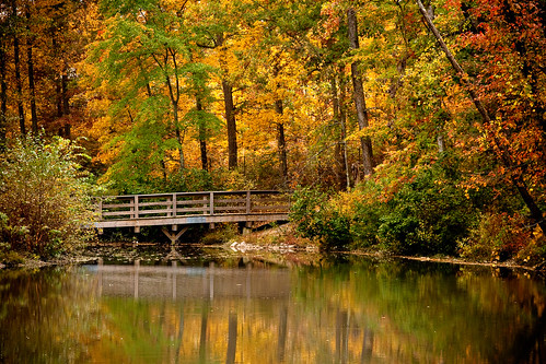 bridge autumn lake fall virginia richmond glenallen henrico