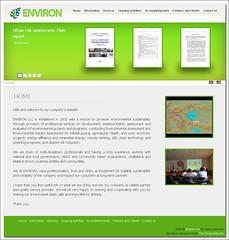 Environ LLC Website Design