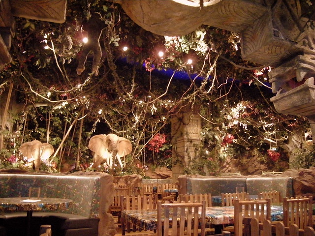 Rainforest Cafe Dubai Party Package