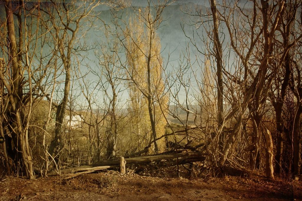 Cottonwood Az Elevation : Elevation of cottonwood az usa maplogs