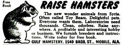 Raise Hamsters (Popular Science - January 1950)
