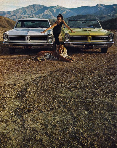 Quick Wide-Track Tigers Pontiac Lemans & GTO by The Pie Shops Collection
