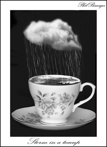 Storm In a Tea Cup Black & White