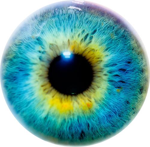 Eye I. By Thomas Tolkien