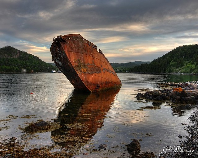 Sposa, Conception Harbour, Newfoundland