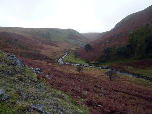 wales geotagged unitedkingdom beulah powys gbr llanwrthwl omm elanvalley mountainmarathon omm2009 originalmountainmarathon riverrhiwnant geo:lat=5223578984 geo:lon=362312794
