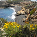 Point Lobos - PCH
