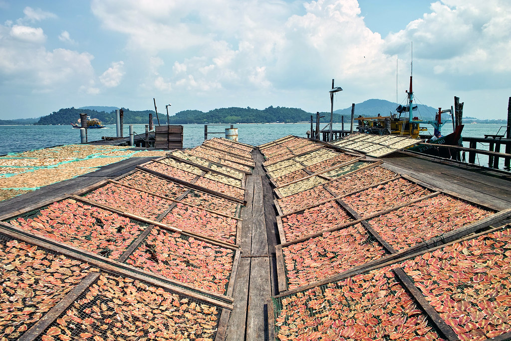 Dried fish at Pangkor Island