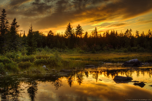 sunset sky reflection clouds forest landscape scenic wilderness bog legacy hdr coth piscataquis platinumphoto piscataquiscounty flickrestrellas shirleymills quarzoespecial coth5 thebestofcengizsqueezeme2groups westshirleybog